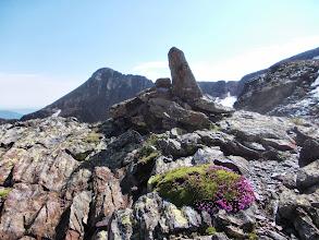 Photo: Cairn Fleuri et pointe du Montcalm