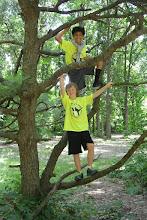 Photo: Darimar Martial Arts 2014 Summer Camp
