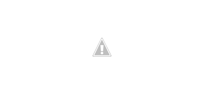 Joho's Bean - Interactive Infographic