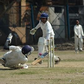 by Subhajit Ganguly - Sports & Fitness Cricket
