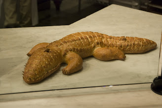 Photo: Boudin bread gator