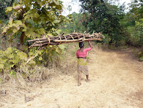 Photo: A lady, at least in her fifites, carrying firewood out of the forest.  I'm sure it was heavier than our packs even on the way up and she was balancing it on her head! This is a coomon rural sight, due to the lack of cheap fuel in these areas.