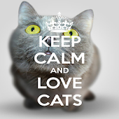 Keep Calm Love Cats Wallpapers
