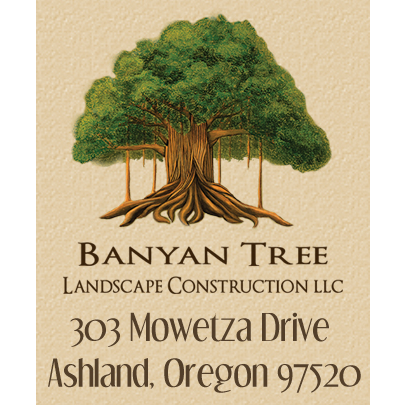 Banyan Tree Landscape Construction image