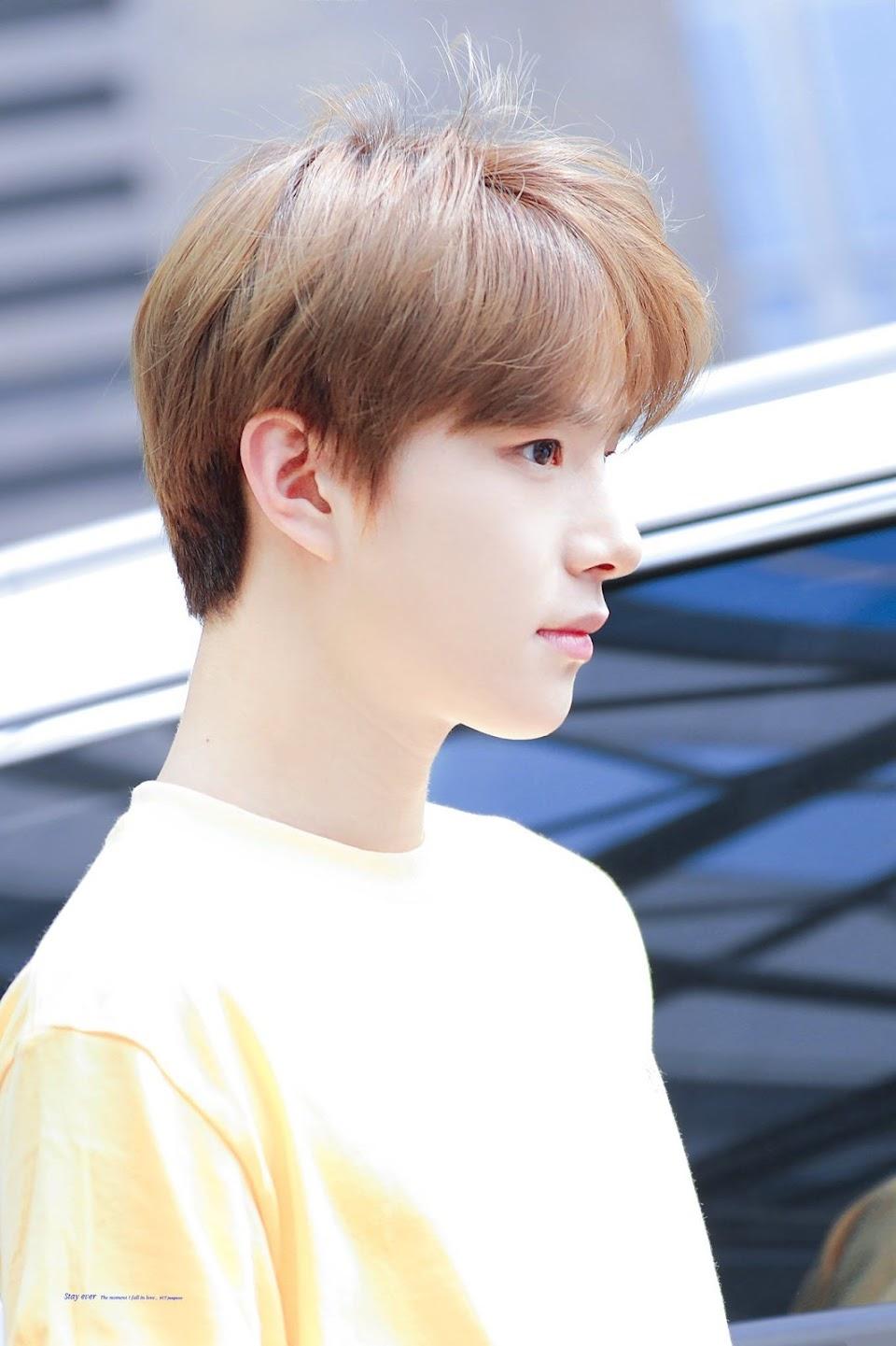 jungwoo profile 11