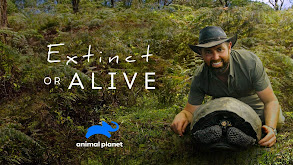 Extinct or Alive thumbnail
