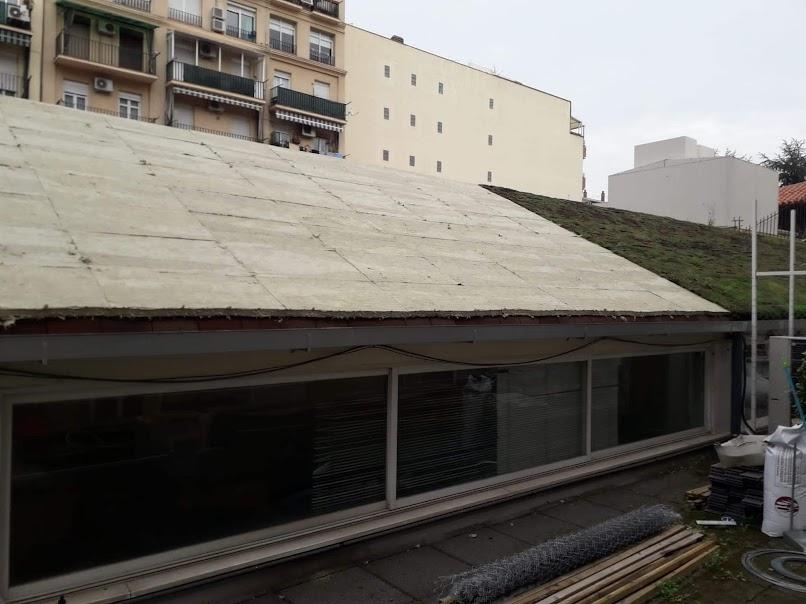 Construcción cubierta vegetal tipo rizoma