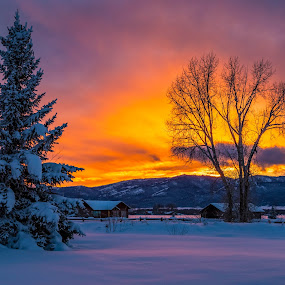 Beautiful Sunset by Chad Roberts - Landscapes Sunsets & Sunrises ( winter, sky, colors, sunset, snow, frost, sundown, frozen, evening,  )