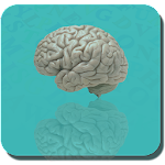 Word search free-brain puzzle: icon