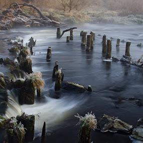 The Berounka river by Robert Benčík - Landscapes Waterscapes