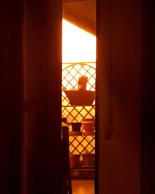 sole dalla finestra di manugahan