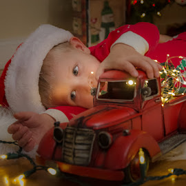 Christmas Truck by Chris Cavallo - Public Holidays Christmas ( red, white, christmas tree, book, tree, hat, christmas lights, christmas, santa,  )