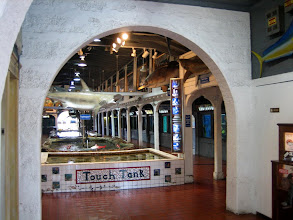 Photo: Key West Aquarium