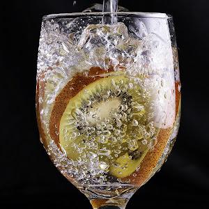Pixoto kiwi on the glass 1.jpg