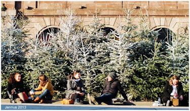 Photo: Sonnenbaden und Picknick mit Weihnachtsbäumen auf dem Platz Kleber in Strasbourg