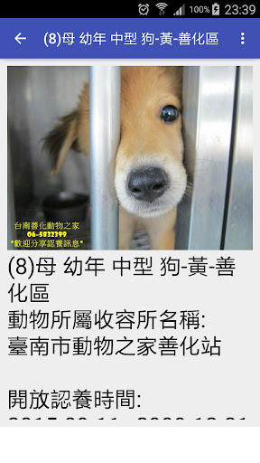 台湾宠物认养12夜 官方资料