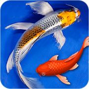 Free Fish Live Wallpapers For Lock Screen && Home Screen APK for Windows 8