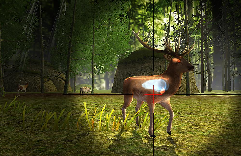 Hunting Safari- screenshot
