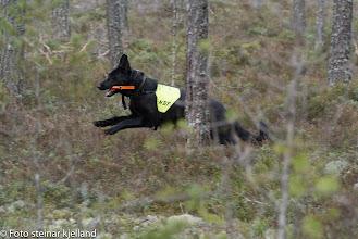 Photo: Vilma har funnet noen og kommer inn med melding!