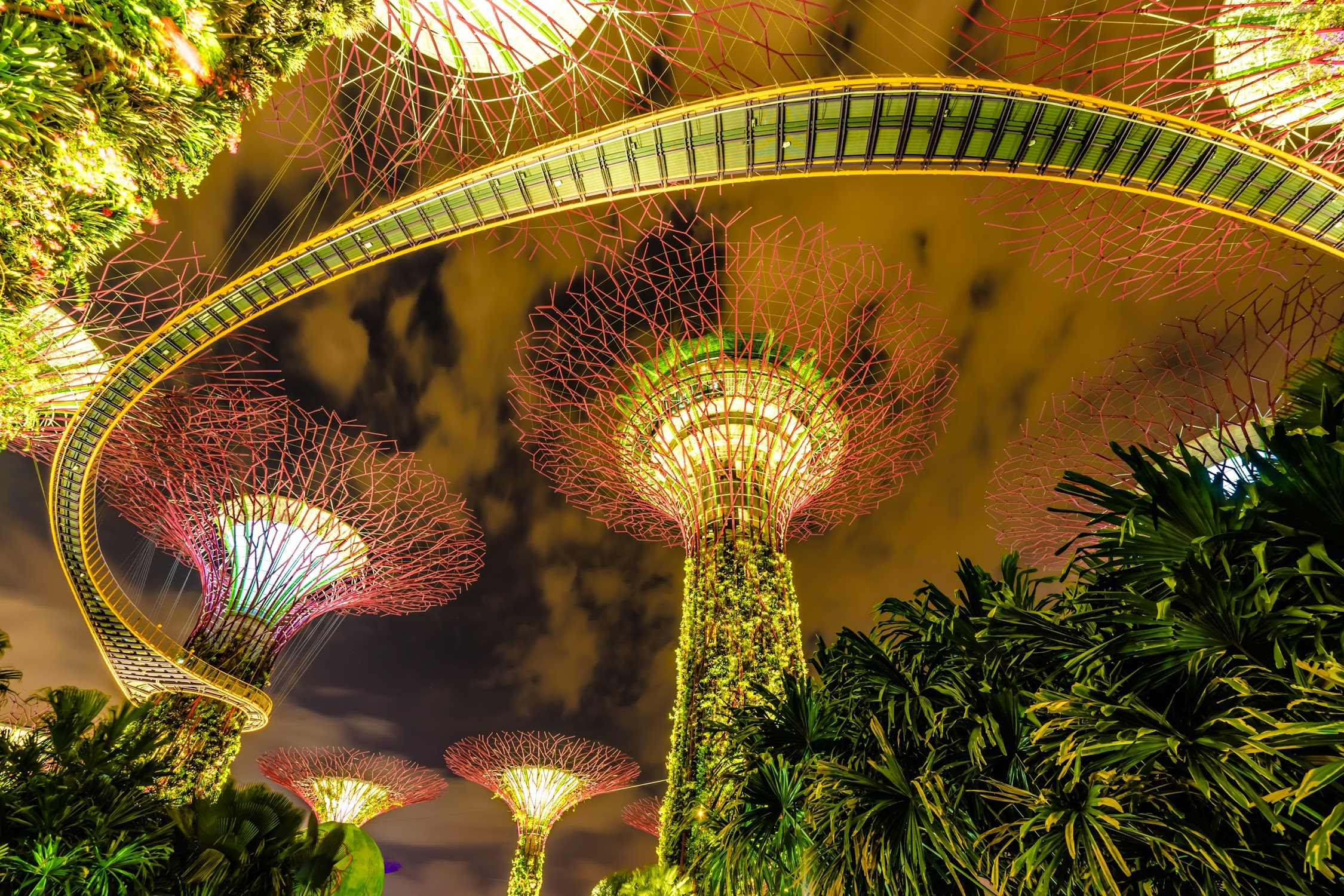 Gardens by the Bay night view2