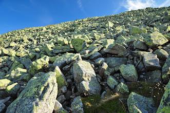 Photo: Wielki Szyszak zbudowany jest z granitu karkonoskiego i pokryty jest gołoborzem