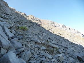 Photo: Me tiro a la izquierda para evitar la pedrera , allá está el collado que separa las dos cimas