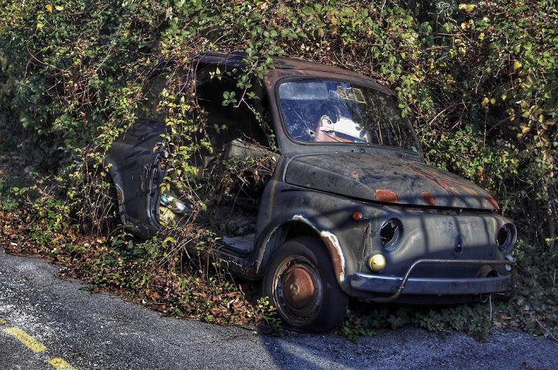 Natura su ruote di manuel_scandale