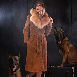 circa by Che Vienes - Digital Art People ( 1920, belgian shepherd dog malinois, dog, belgian shepherd dog groenendael )