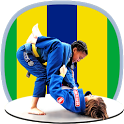 BJJ in brief icon