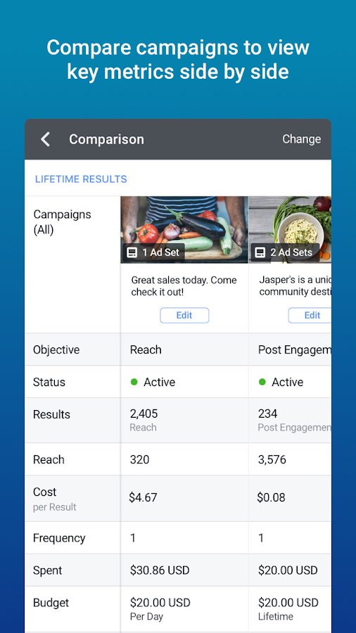 Facebook Ads Manager- screenshot