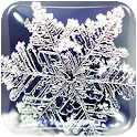 Winter Live Wallpaper HD Free icon
