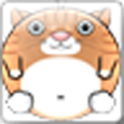 Funny Cat Game icon