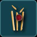 Cricket IPL 2015 icon