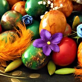Easter eggs by Elenka Smilenova - Public Holidays Easter ( easter eggs )