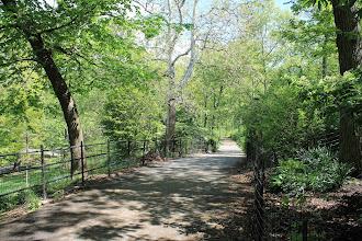 Photo: Riverside Park. Around 105th St