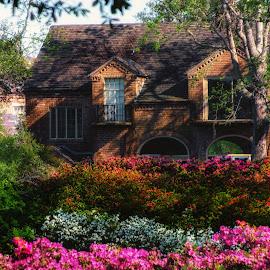 Bellingrath Gardens by Dave Walters - Buildings & Architecture Homes ( mystical, colors, bellingrath gardens, architecture, flowers, homes )