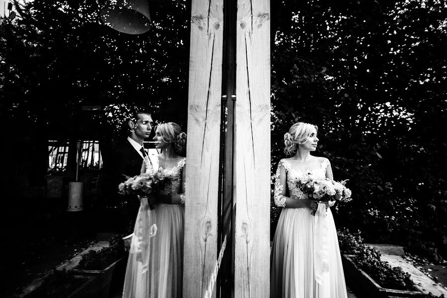 Bryllupsfotograf Dmitriy Besov (Zmei99). Bilde av 02.02.2019