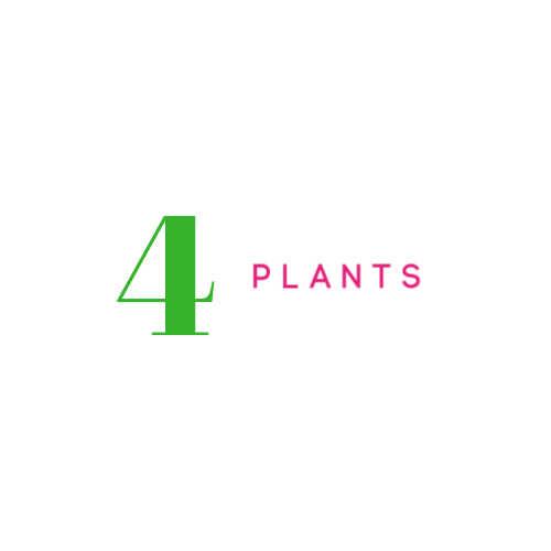 #4 PLANTS