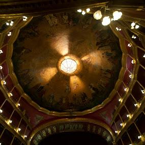 Theater at Guadalajara by Cristobal Garciaferro Rubio - Buildings & Architecture Architectural Detail ( fresco, lights, interior, theater, guadalajara, paints )