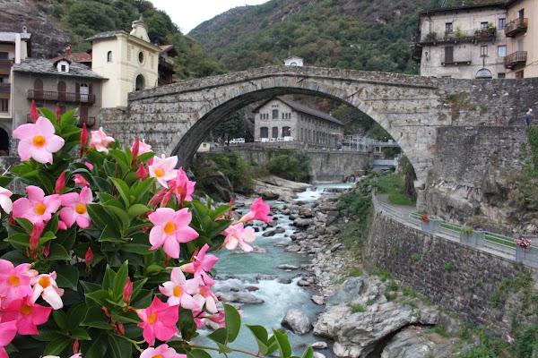 Flowers on the bridge di Simone