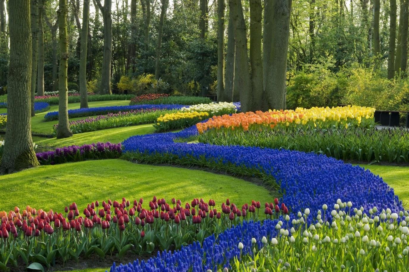 Φανταστείτε να είχαμε θεραπευτικούς κήπους στα νοσοκομεία