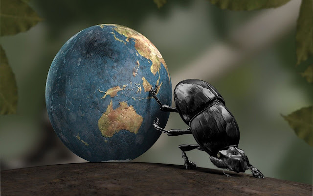 Dung Beetle - New Tab in HD