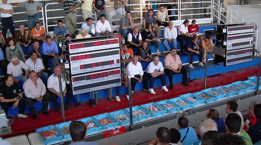 subasta electrónica en la lonja pesquera de Almería que gestiona la Asociación Asopesca.