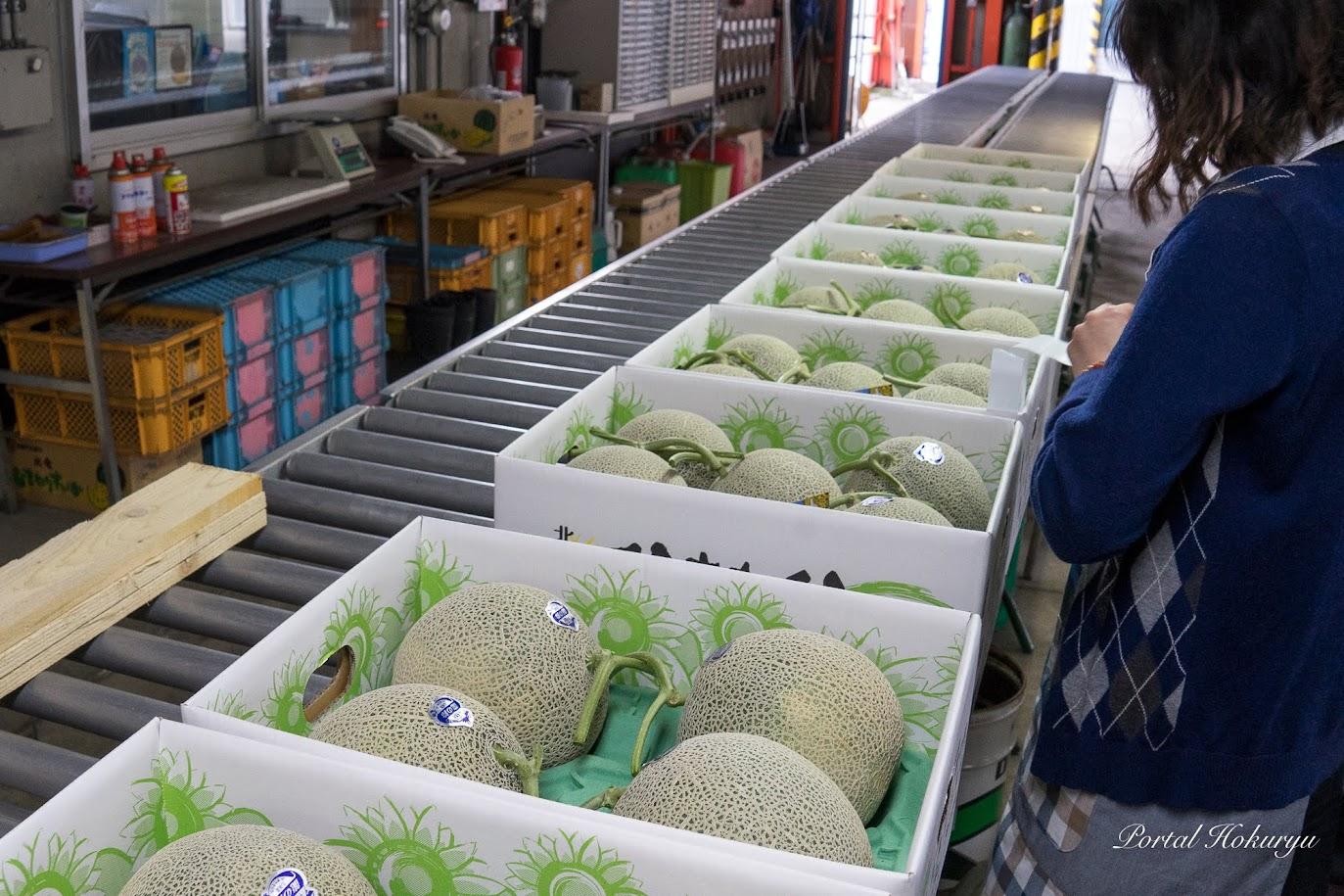 農産物集出荷施設に初出荷