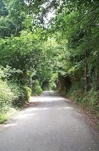 Photo: Camiño na parroquia de Moruxo