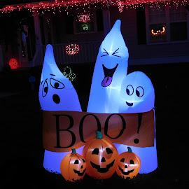 Boo! by Karen Carter Goforth - Public Holidays Halloween ( halloween, ghost, decoration, lights,  )