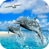 Dolphins 3D Video Wallpaper