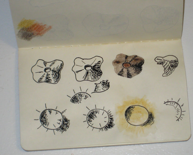 Photo: Some studies for mountains and craters