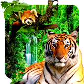3D Animals Parallax Live Wallpaper Android APK Download Free By Acinis