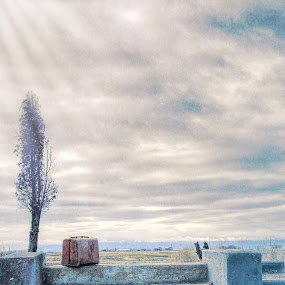 The Visitor by Tracy Lynn Hart - Artistic Objects Still Life ( adventure, hdr, suitcase, still life, travel, place, alone, lonely )